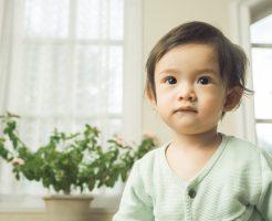 小さい子供(乳児、幼児)がいる場合の引越し